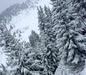 Bad Hofgastein - Bad Gastein - Skischaukel Schlossalm-Angertal-Stubnerkogel