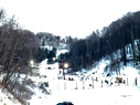Wolf Ridge Ski Resort
