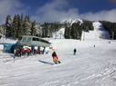 Mt Washington Alpine Resort