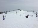 Mt. Brighton