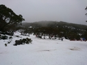 Mt. Baw Baw Alpine Resort