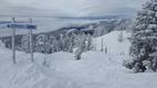 Mt Seymour