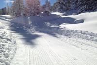 Passo Lavazè -  Oclini