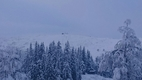 Furedalen - Kvamskogen