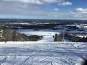 Snow Ridge