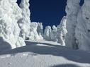Mt. Spokane Ski and Snowboard Park