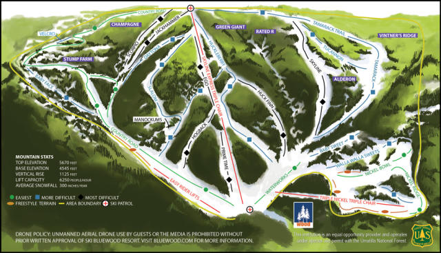 Bluewood Plan des pistes